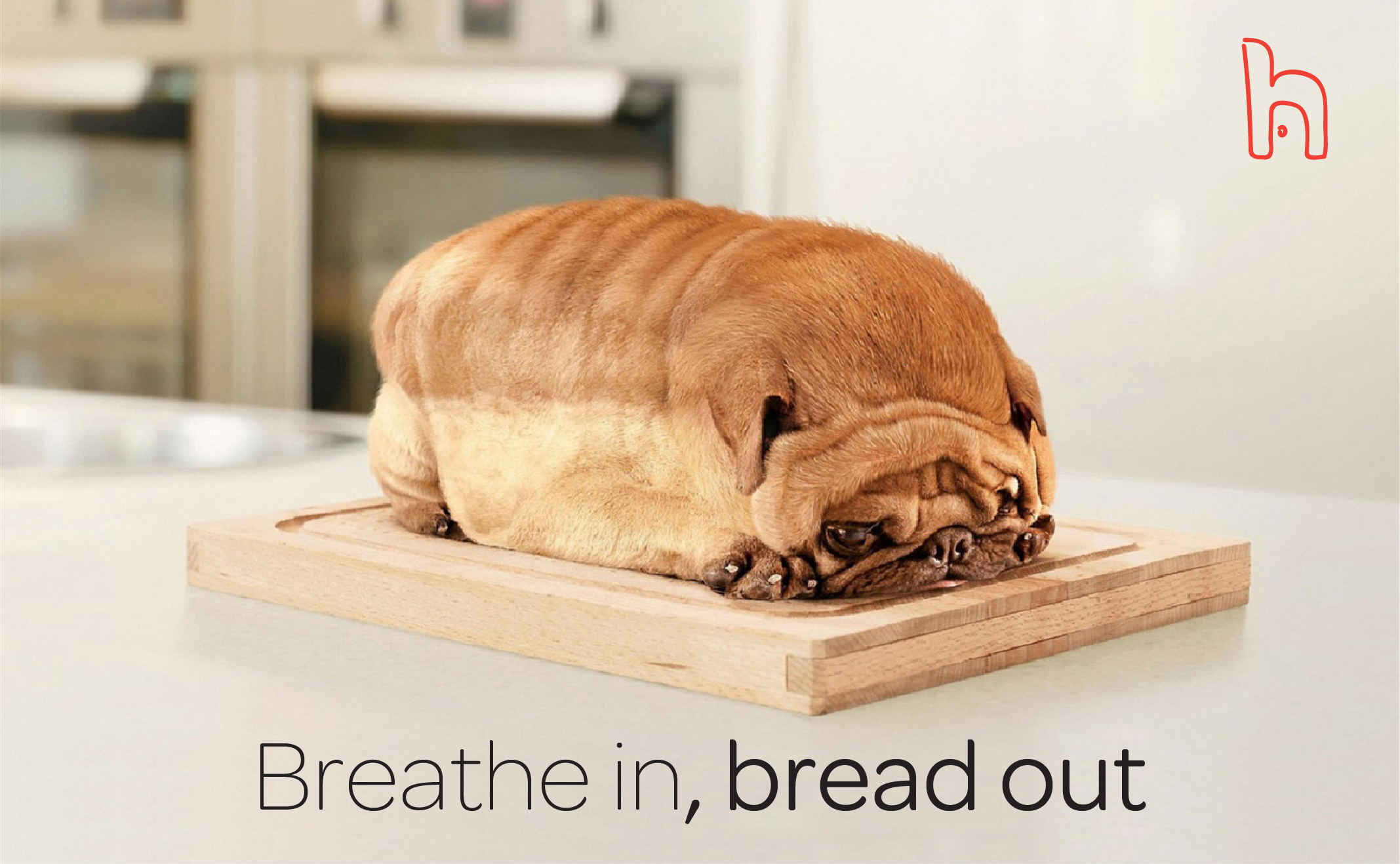 breathe-in-bread-out