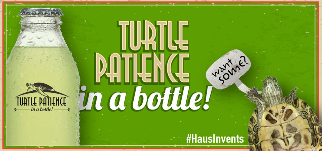 Turtle Patience in a bottle!